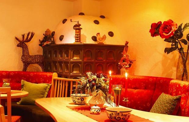 фотографии Familienhotel Berghof изображение №20