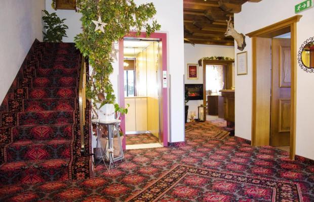 фотографии отеля Helvetia изображение №11