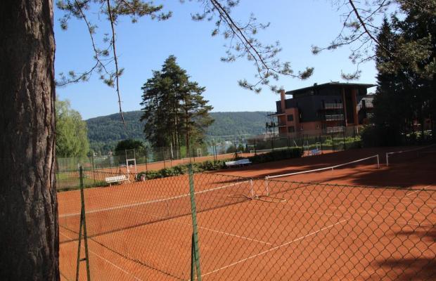 фотографии Tennis + Yachthotel изображение №12