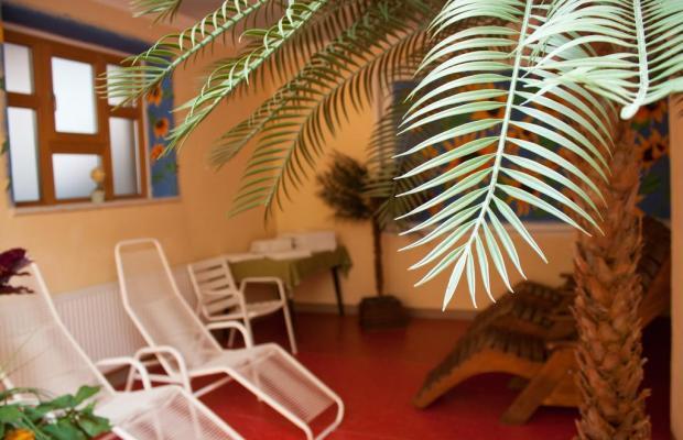 фотографии отеля Waldcafe изображение №11