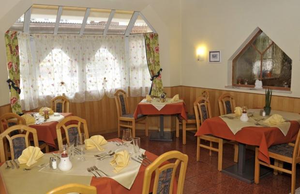 фото отеля Familienhotel zum Stadttor изображение №17