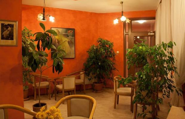 фотографии отеля Алекс (Alex) изображение №31