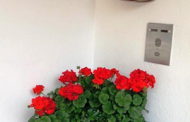 фотографии отеля Garni Le Chalet изображение №11