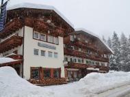 Hotel Rododendro, 3*