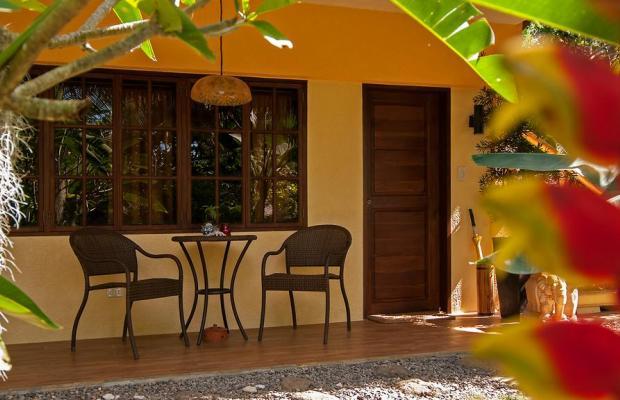 фотографии отеля Oasis Resort изображение №15