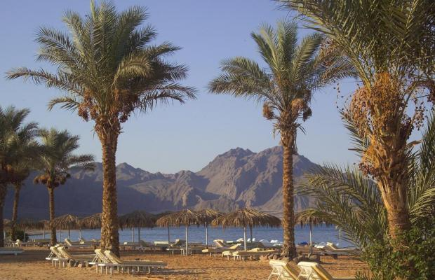 фотографии отеля La Playa Beach Resort Taba (ex. Sol Taba Red Sea; Sonesta Beach Resort Taba) изображение №35