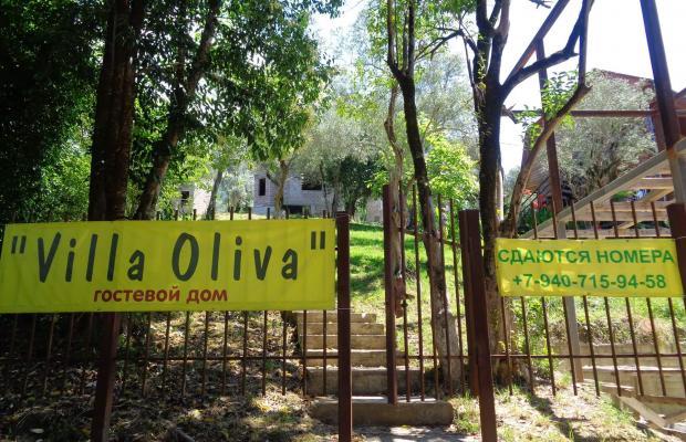 фото отеля Villa Oliva (Вилла Олива) изображение №9