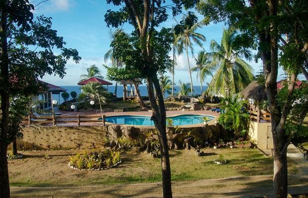 фотографии Blue Star Dive & Resort Bohol изображение №8