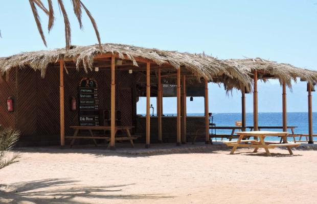 фотографии отеля Coral Resort Nuweiba (ех. Hilton Nuweiba Coral Resort) изображение №31