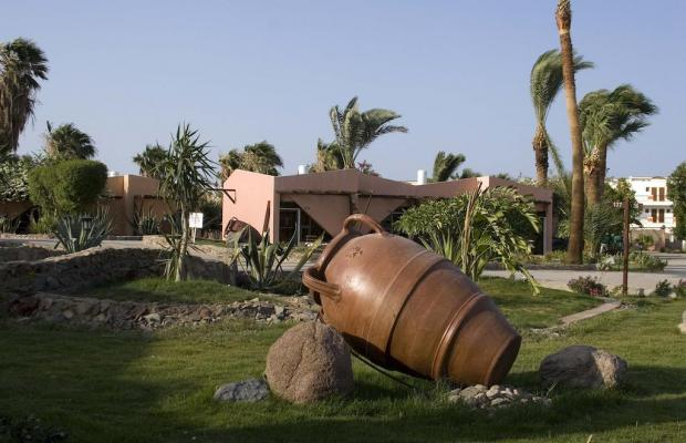 фото Sol Y Mar Paradise Beach Resort by Jaz Hotels изображение №10