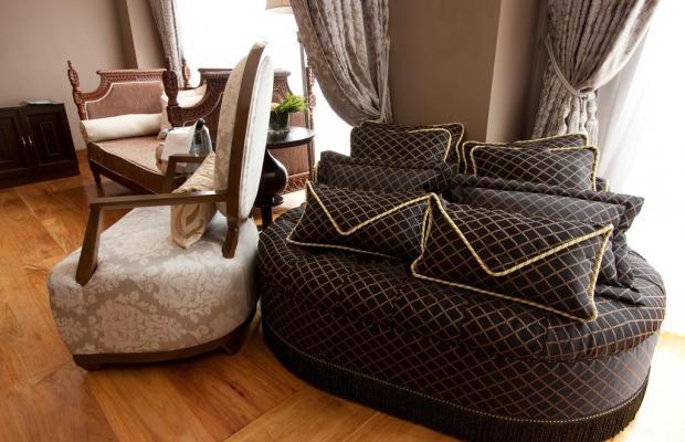 фото отеля Celeste изображение №13