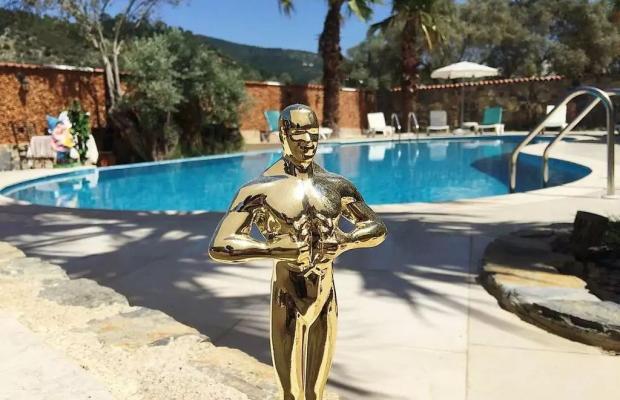 фото Oscar изображение №26