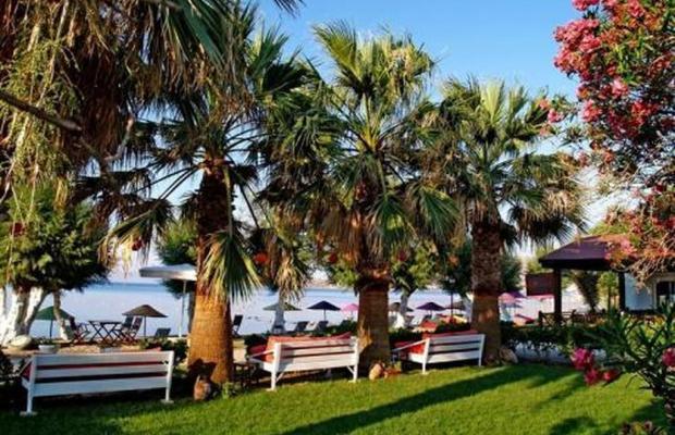 фотографии отеля Yilmaz изображение №15