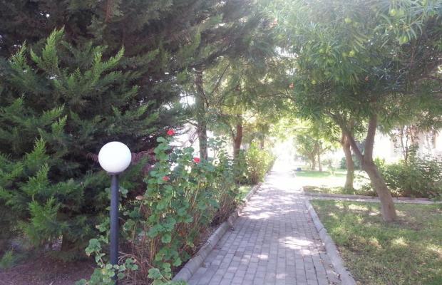 фотографии отеля Muskebi Apart изображение №27