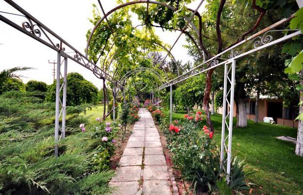 фото отеля Mustafa изображение №17