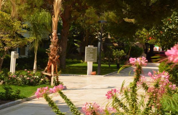 фотографии отеля Flora Garden Ephesus (ex. Club Mersin Beach) изображение №11