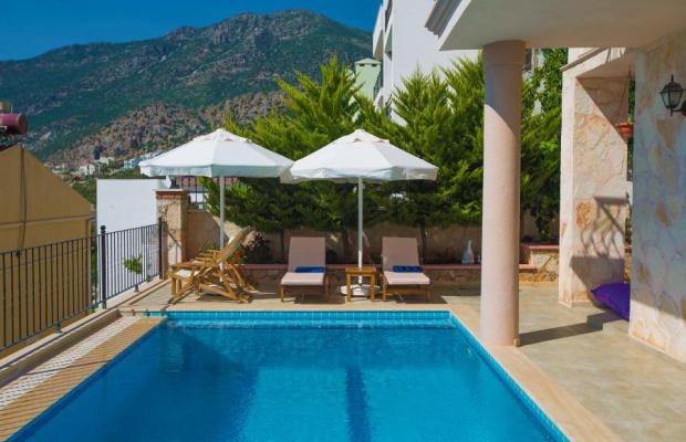 фото отеля  Villa White Star изображение №25