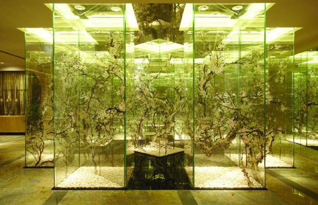 фотографии отеля Pravo (ex. Pacific Luck) изображение №35