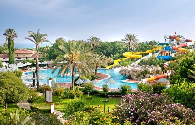 фотографии отеля Belconti Resort изображение №55
