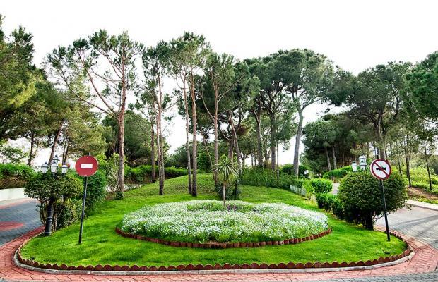фотографии Belconti Resort изображение №48