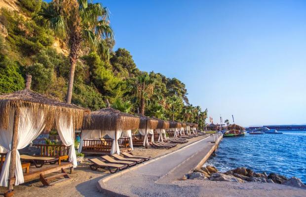 фотографии Pine Bay Holiday Resort изображение №8