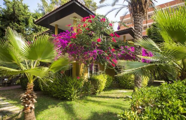 фотографии Club Dizalya изображение №12
