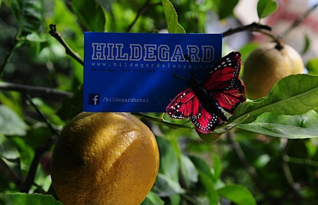 фотографии отеля Hildegard изображение №59