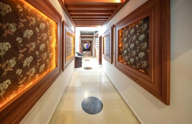 фотографии отеля Timo Resort (ex. Maksim Ottimo)  изображение №55