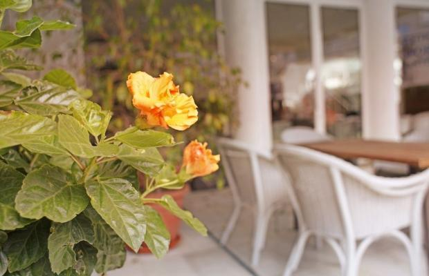 фотографии отеля Thalassa Sport Spa изображение №3