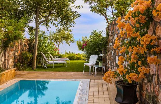 фотографии отеля Danai Beach Resort & Villas изображение №11