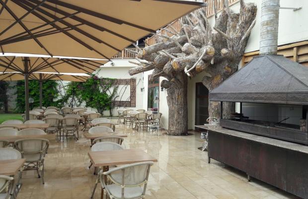 фото отеля Sealight Resort изображение №5
