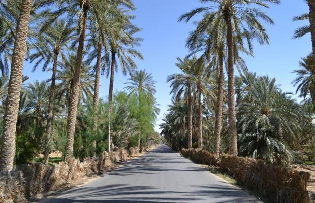 фотографии отеля El Mouradi изображение №3