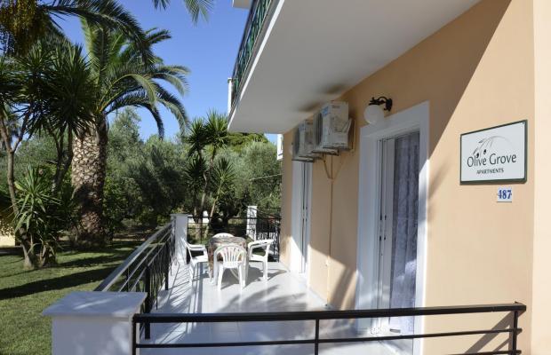 фотографии отеля Olive Grove Apartments изображение №19