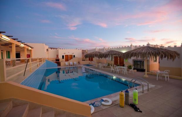 фотографии отеля Red Sea Dive Center изображение №15