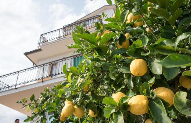 фото отеля Residence Oleandro изображение №25