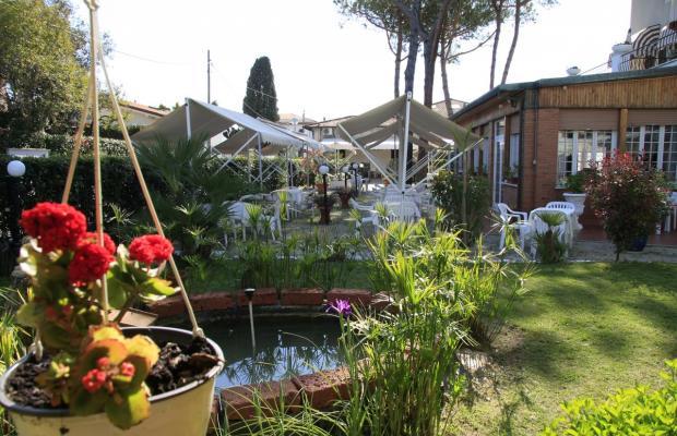 фотографии отеля La Pineta Al Mare изображение №15