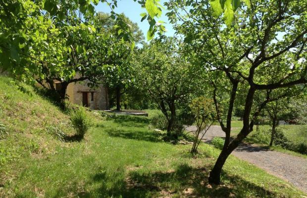 фотографии Il Picchio Verde изображение №16