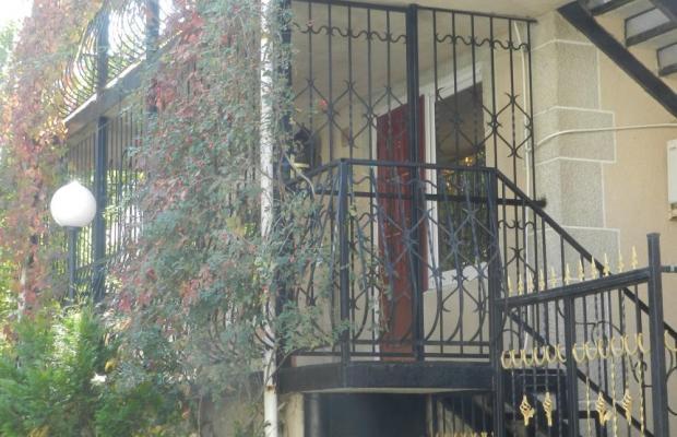 фото отеля Чайка (Прибой) изображение №21