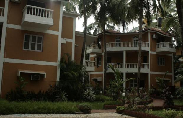 фото Palm Resort изображение №14